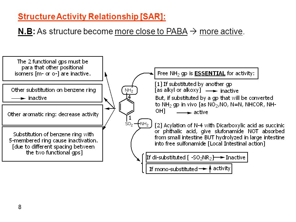 theophylline structure activity relationship sar